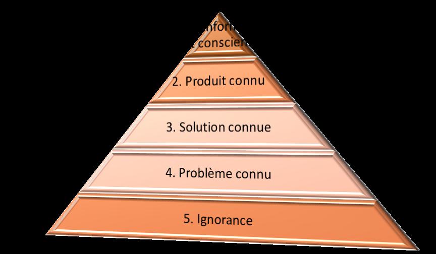 Pyramide 5 niveaux de conscience